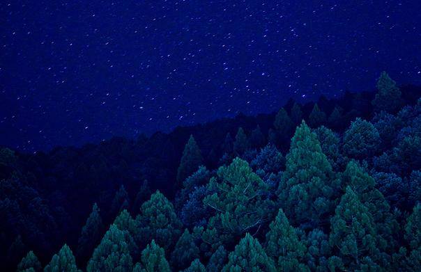 熊野 星(部分), 齊藤文護, 2010年, ファインアートペーパー、インクジェットプリント, H680 x W530 x D20 mm