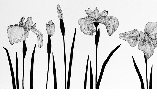 Garden #11, 蒲原みどり, 2013年, 350 × 2,000 × 20 mm, 木製パネルに油彩